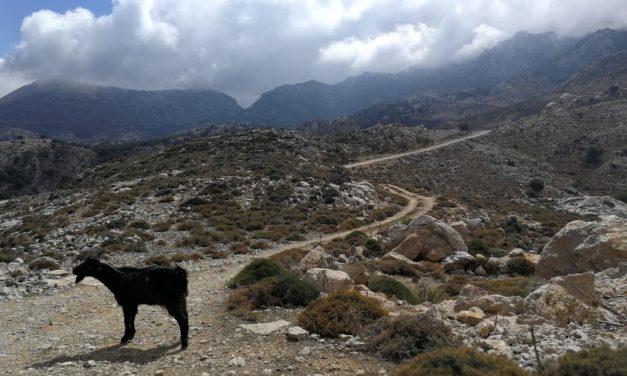 Kreteńskie góry