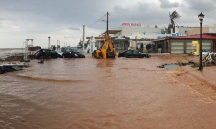 Zmiany u Dory i Kreta w rozpaczy